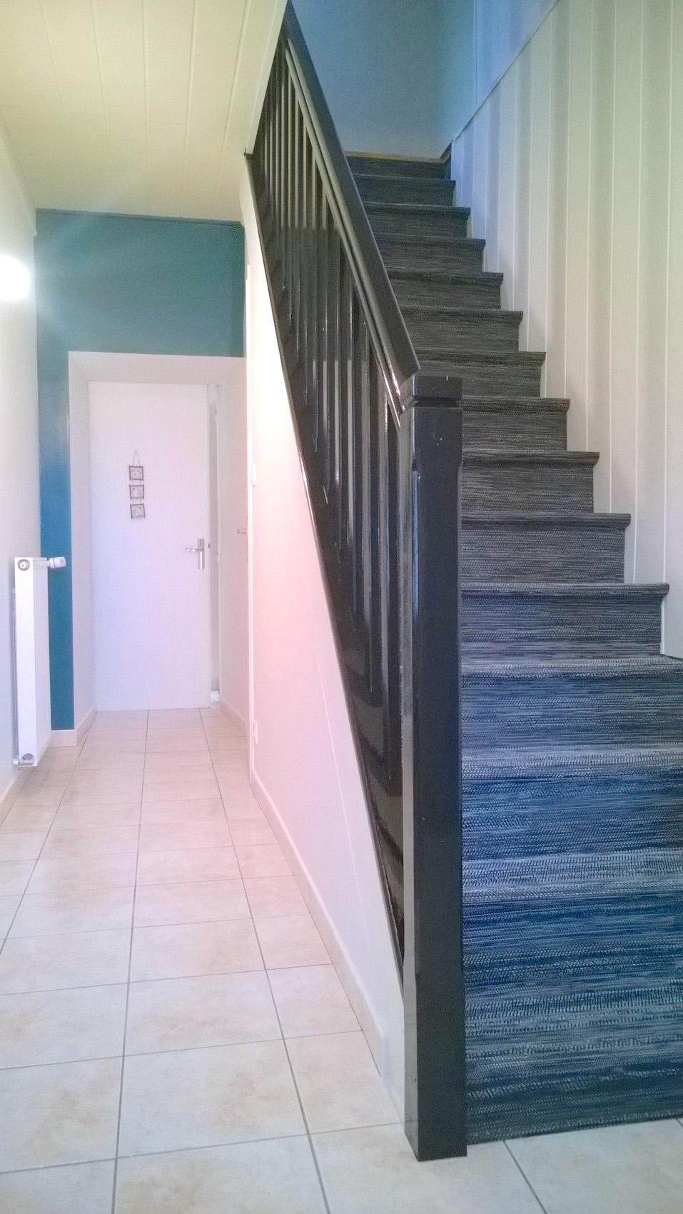 Peinture entrée couloir rampe